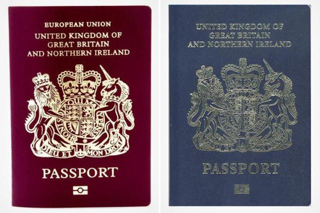dd-composite-britt-passport.jpg